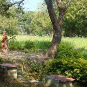 Indija---Umik-v-tišino,-Tiruvannamalai